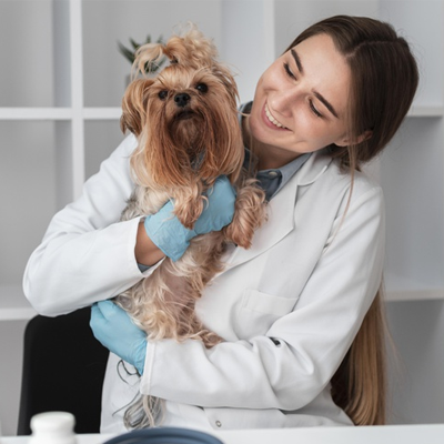 Veterinary Nursing Diploma Level 3
